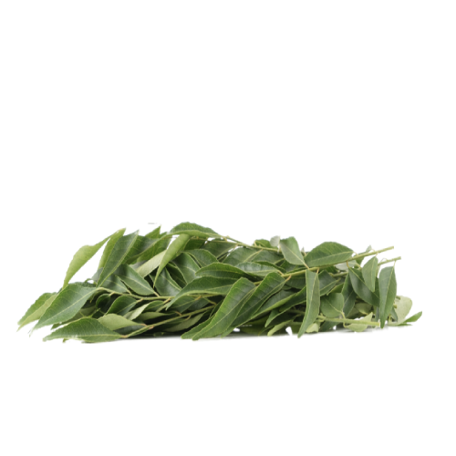 CURRY LEAVES FRESH