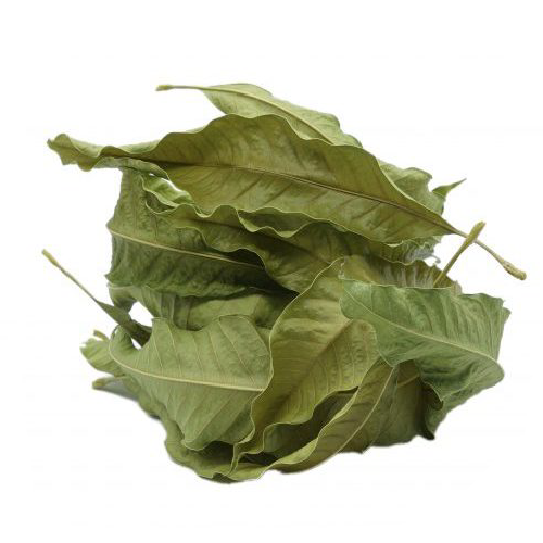 MANGO LEAVES DRY