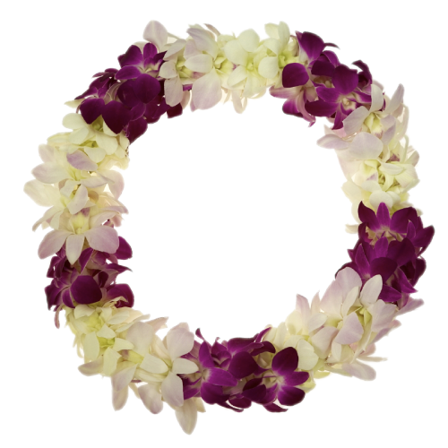 3 COLORED ORCHID LEIS