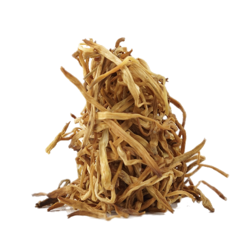 LILY-STEMS-DRIED